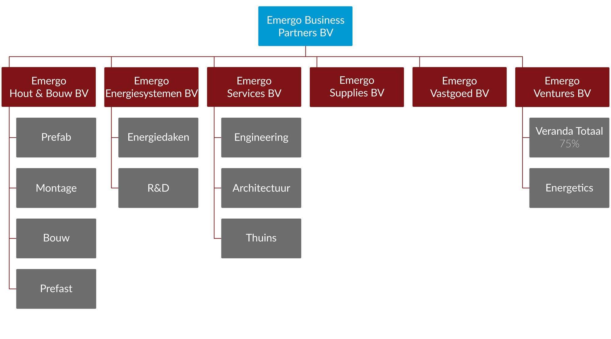 Organogram Emergo Business Partners